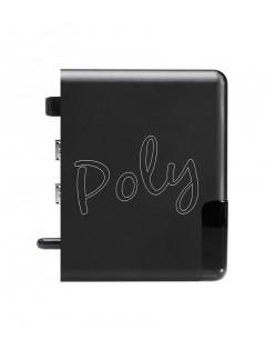 Lecteur réseau Chord Poly