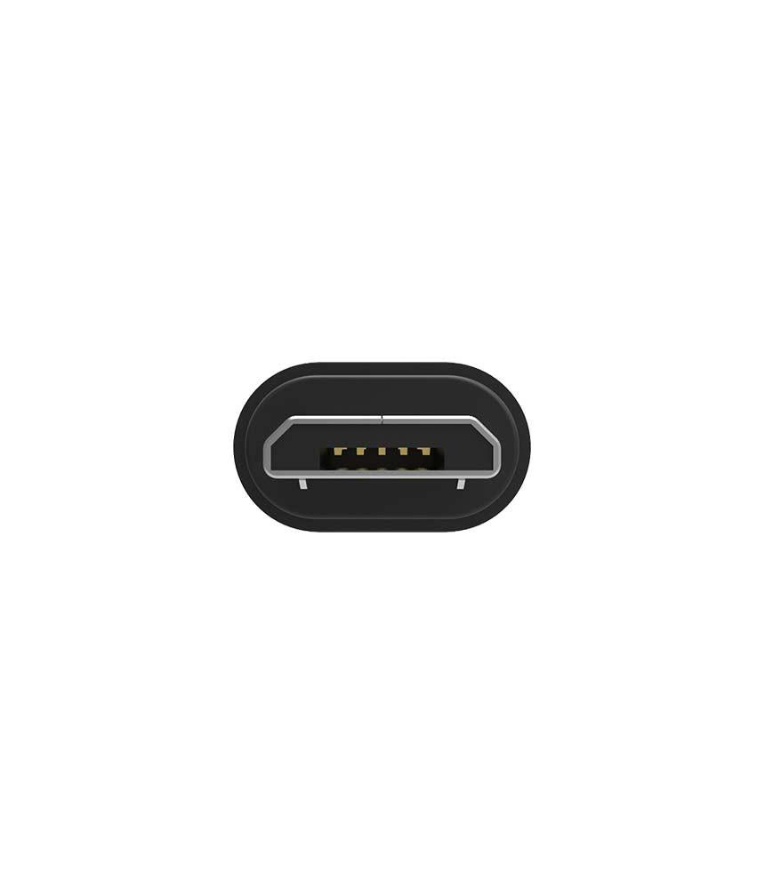 iFi - Câble OTG Micro USB