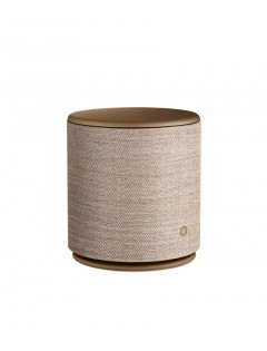 Enceinte Bang and Olufsen M5